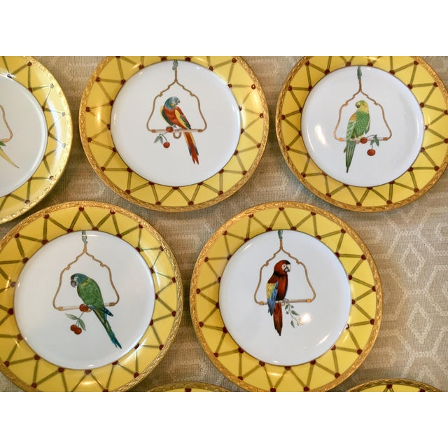 Chelsea House Inc Chelsea House Decorative Tropical Bird Parrot Plates - Set of 8 For Sale - Image 4 of 10