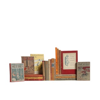 Cinnamon & Sugar Children's : Set of Twenty Decorative Books