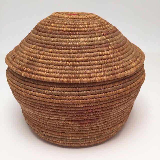 Folk Art Northwest Coast Salish Lidded Coiled Basket For Sale - Image 3 of 13