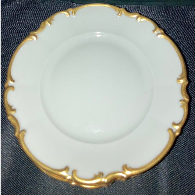 Vintage Hutschenreuther Brighton & Pasco Porcelain Bread & Butter Plates - Set of 12 For Sale - Image 12 of 13