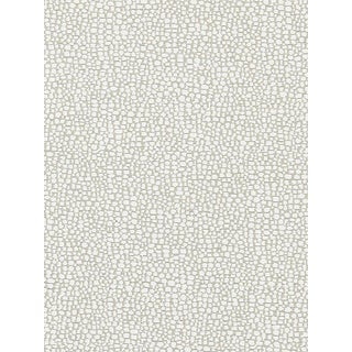 Sample, Scalamandre Stingray, Flax Fabric For Sale