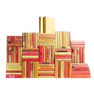 Midcentury Sunset Book Wall : Set of One Hundred Decorative Books