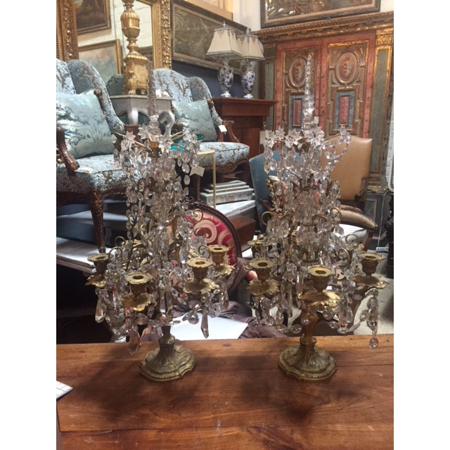 Early 19th Century French Dore Bronze & Crystal Girandoles - a Pair For Sale - Image 4 of 12