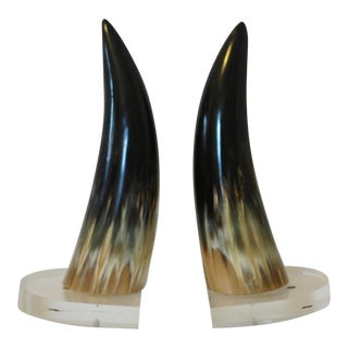 Cow Horn Bookends on Lucite Bases - a Pair For Sale