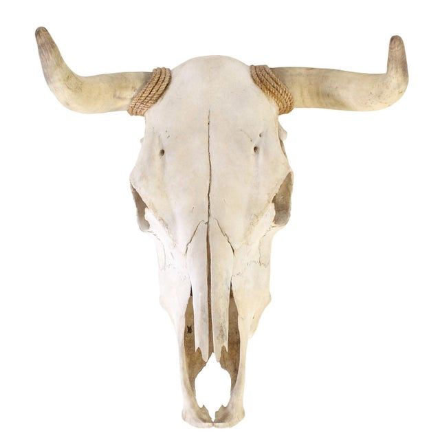 Authentic Vintage Southwestern Wall Mounted Cow Skull For Sale In Los Angeles - Image 6 of 6