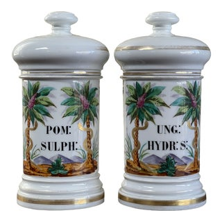 Mid 19th Century French Louis Philippe Apothecary Jars - a Pair For Sale