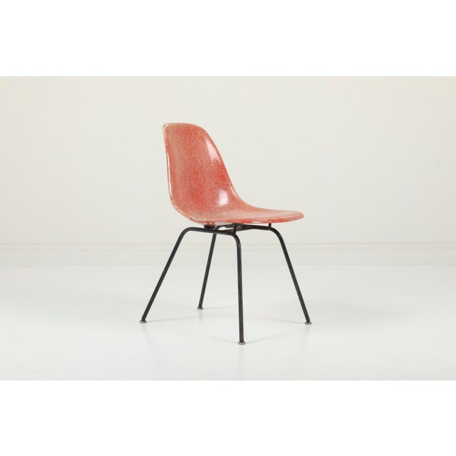 Mid-Century Modern 1950s Vintag Herman Miller Eames Dsx Chairs - Pair For Sale - Image 3 of 11