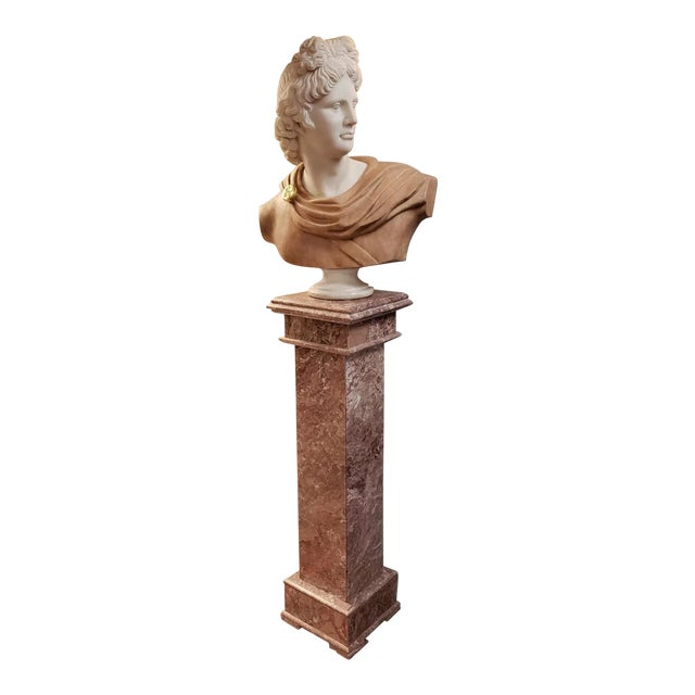 Italian Art Nouveau Carrara and Salmon Marble Apollo of Belvedere Bust on Rose Marble Pedestal For Sale