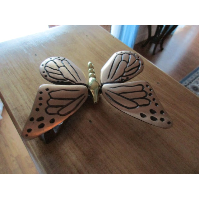 Here's a beautifully designed monarch butterfly door knocker by Michael Healy. Healy is known for artfully created door...