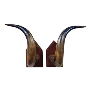Pair of Mounted Natural Horns for Display For Sale