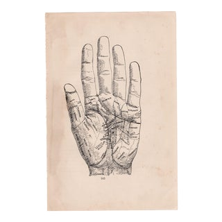 """Fortune Telling Hand"" Digital Print by Louise Weinberg For Sale"
