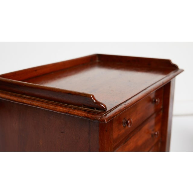 Brown Pair of Petite English Mahogany Chests For Sale - Image 8 of 10