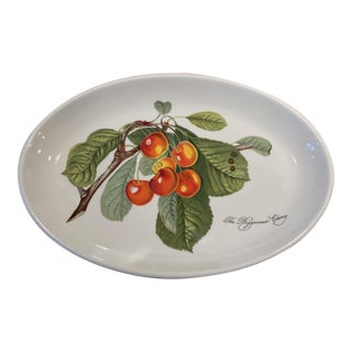 Portmeirion Pomona Vintage Cherry Pattern Steak Plate or Serving Platter For Sale