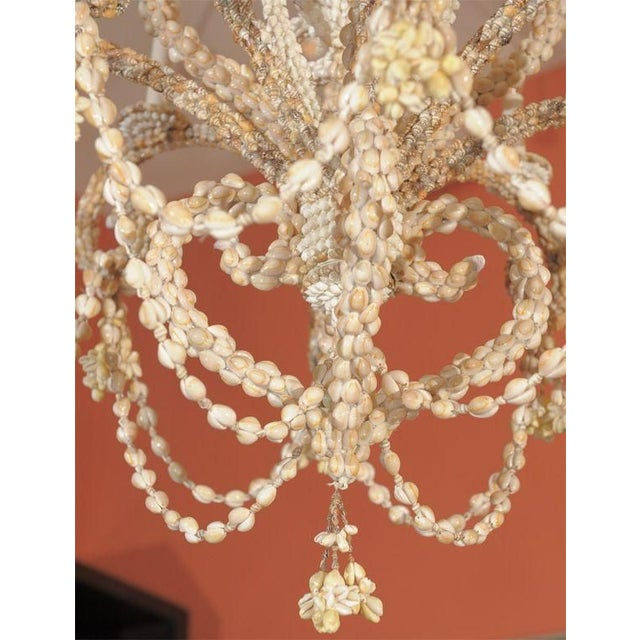 Shell Encrusted Chandelier - Image 2 of 5