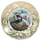 Image of Antique Royal Derby Porcelain Bird Plate For Sale