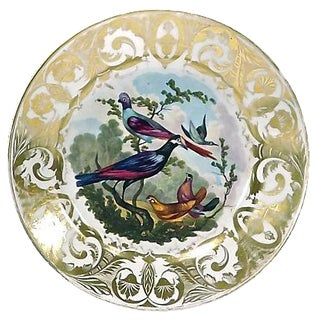 Antique Royal Derby Porcelain Bird Plate For Sale