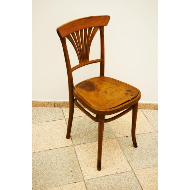 Thonet Model No. 221 Chair for Thonet, 1900 For Sale - Image 4 of 5