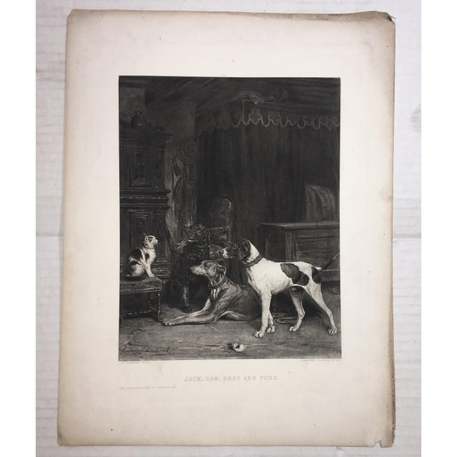 Black 1883 Antique L E Lambert Dogs & Cat Lithograph Print For Sale - Image 8 of 8