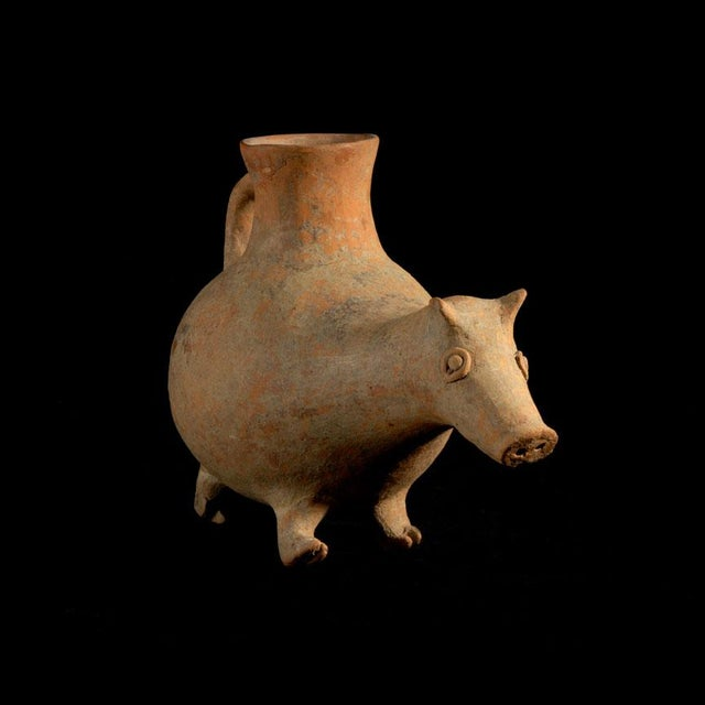 Rather large red earthenware aquamanile in the shape of a curious animal resembling a piglet. The spout shaped as his...