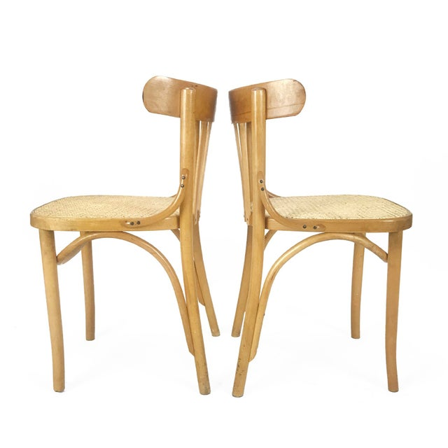 Vintage Romanian Maple Bentwood & Cane Side Chairs - A Pair For Sale - Image 4 of 8