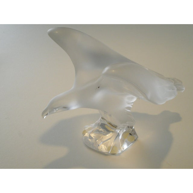 1990s Lalique Frosted Royal Eagle-Wings Spread- Falcon- Mod-1205700 For Sale - Image 5 of 7