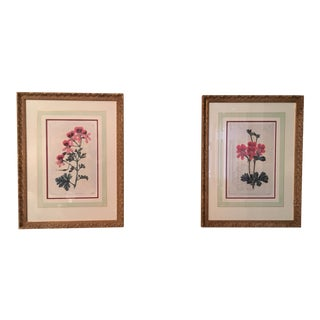 Ethan Allen Geranium Prints - A Pair For Sale