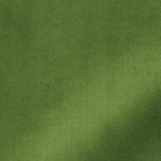Schumacher Rocky Performance Velvet Fabric in Leaf For Sale