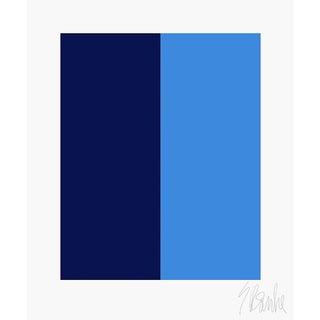 "Color's Cooperation No. 2 Fine Art Print 16"" X 20"" by Liz Roache For Sale"
