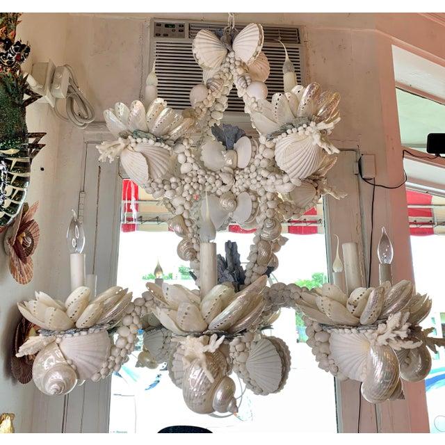 Large 8-Light Shell Chandelier For Sale - Image 9 of 9