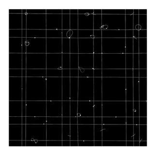 "Tenesh Webber ""T Square"", Photograph For Sale"