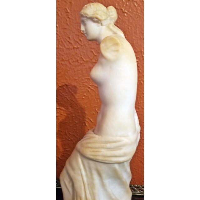 19c Italian Marble Figurine of Venus De Milo For Sale - Image 9 of 12