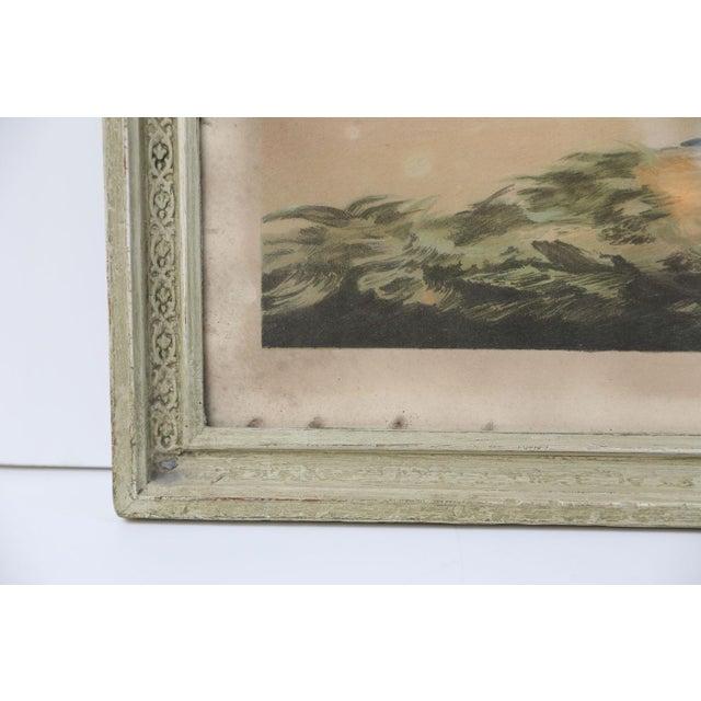 Belgian Colored Framed Pigeon Engraving For Sale - Image 6 of 7