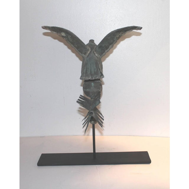 Late 19th Century Fantastic Diminutive 19th Century Eagle Full Body Weathervane on Stand For Sale - Image 5 of 9