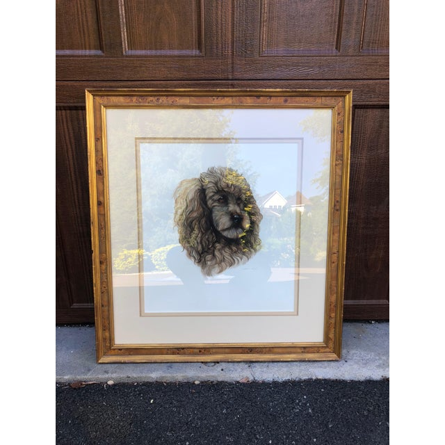 Brown Vintage Artist Rendered Poodle Portrait Drawing in Burl Walnut Frame For Sale - Image 8 of 10
