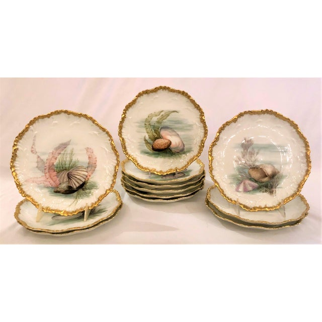 Belle Epoque Antique French Limoges Porcelain Fish Service of 12 Plates, 1 Platter and 1 Sauce Bowl. For Sale - Image 3 of 5