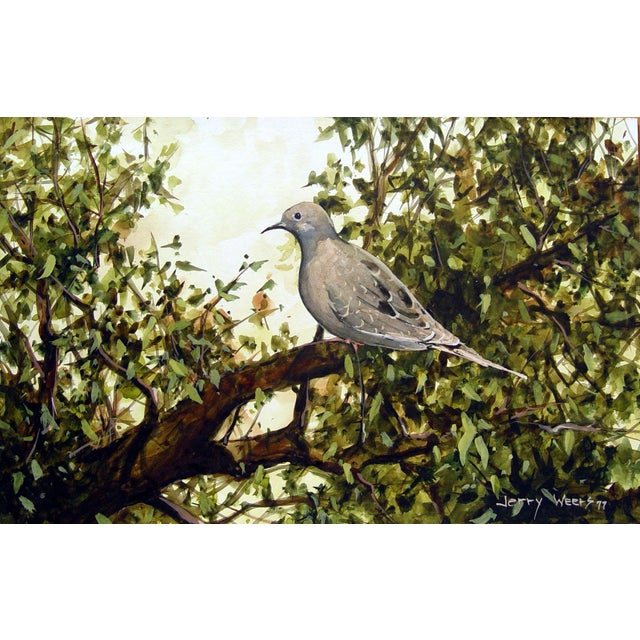 Mourning Dove (Turtle Dove) gouache on artist board by Jerry Weers (20th century, Texas). Signed lower right. Unframed....