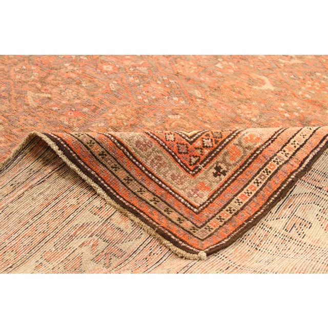Antique Persian rug handwoven in the 1920s using the finest wool and the best dyes 100% extracted from plants and...