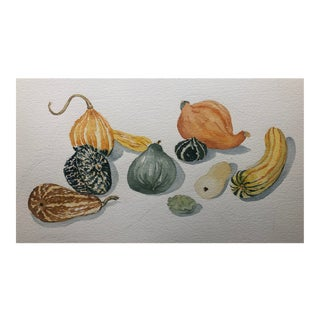 Watercolor Still Life of Gourds For Sale