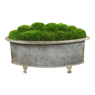 Footed Galvanized Metal Planter With Preserved Moss
