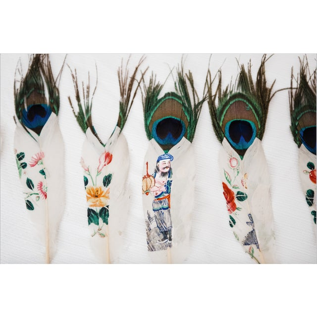 Painted Peacock Feathers - Set of 14 - Image 5 of 8