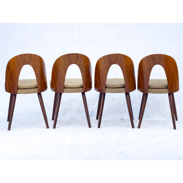 These chairs were designed by Antonin Šuman and were manufactured by the Tatra Nabytok Company, in the 1960s, in...