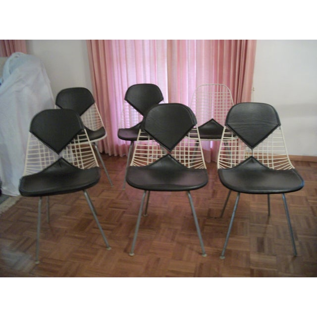 Mid-Century Modern Eames for Herman Miller Bikini Wire Chairs - Set of 6 For Sale - Image 11 of 11