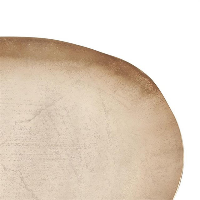 Kenneth Ludwig Chicago Kenneth Ludwig Bronze Aluminum Organic Oval Platter For Sale - Image 4 of 5