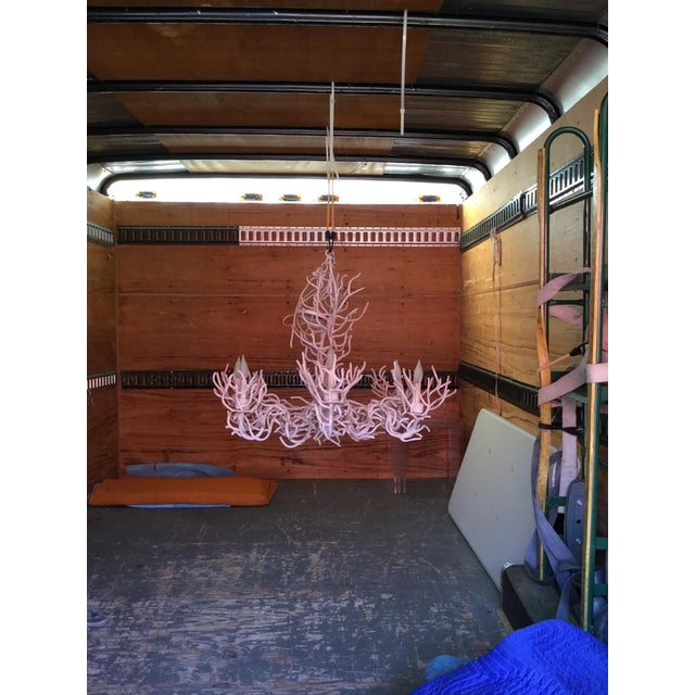 A great coral looking chandelier done in all white with a gesso finish. Very good condition wired chain and canopy...