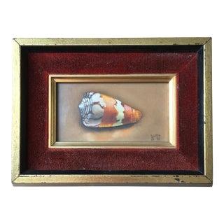 """Conus Sowerby II Reeve"" Helen DeWerd Solo Seashell Painting Helen De Werd For Sale"