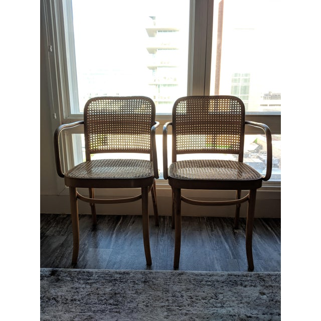 Set of Mid-Century Modern Josef Hoffmann Prague Chairs For Sale - Image 10 of 10