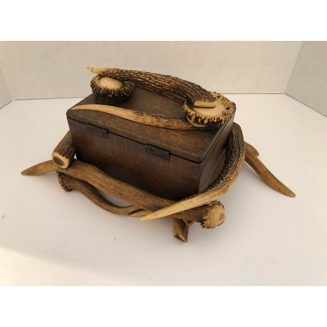 Black Forest Black Forest Wood Box With Natural Antlers For Sale - Image 3 of 13