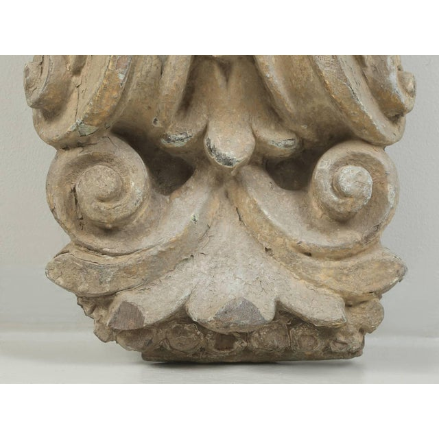 Antique Italian Carved Decorative Architectural Element For Sale In Chicago - Image 6 of 10