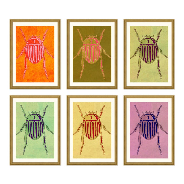 Orange Striped Beetle Set of 6 by Jessica Molnar in Gold Frame, Small Art Print For Sale - Image 8 of 8