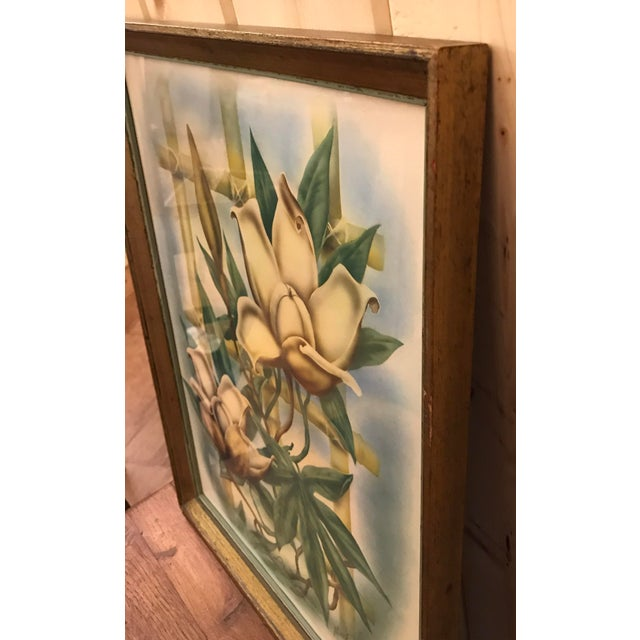 Mid Century Lotus Botanical Print by Ted Mundorff For Sale - Image 5 of 11